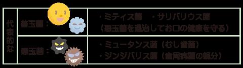 代表的な善玉菌と悪玉菌紹介!善玉菌:ミティス菌・サリバリウス菌 (悪玉菌を退治してお口の健康を守る)悪玉菌:ミュータンス菌(むし歯菌)・ジンジバリス菌(歯周病菌の代表格)