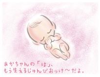 乳歯が準備完了の胎児
